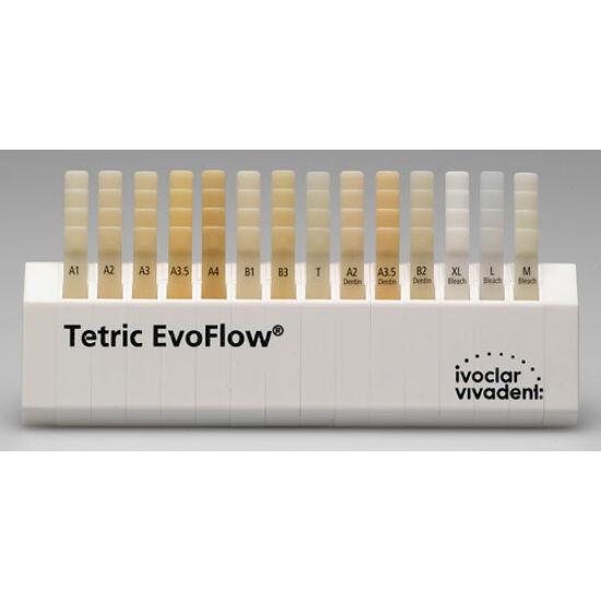 Tetric EvoFlow shade guide